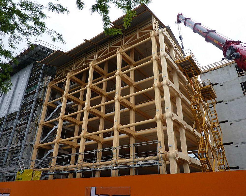 Строительство многоэтажки из дерева